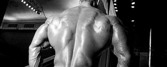 Que comer para subir de peso y aumentar masa muscular